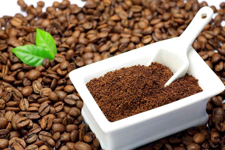 Giá cà phê hôm nay