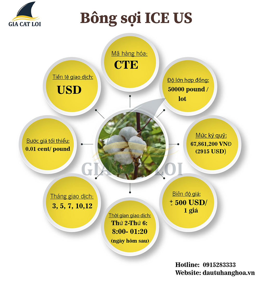 bông sơi ice us