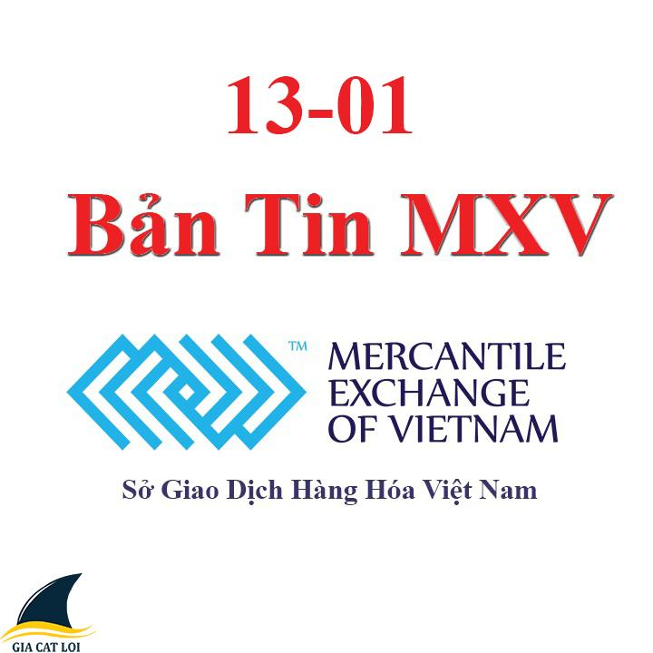 Bản tin MXV 13-01
